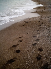 seascape with footprints